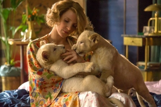 Kostenloses The Zookeepers Wife Film with Jessica Chastain Wallpaper für 1366x768
