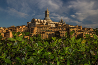Cathedral of Siena Background for Android, iPhone and iPad