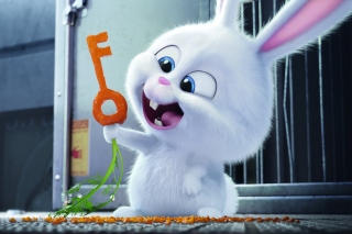 The Secret Life of Pets Bunny sfondi gratuiti per cellulari Android, iPhone, iPad e desktop