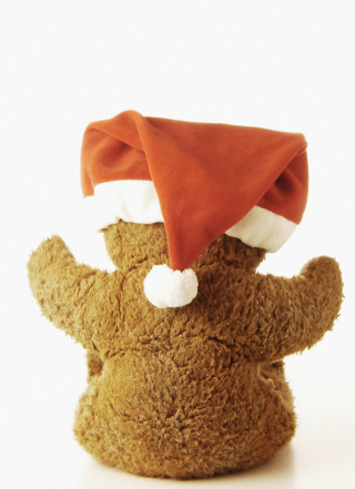 Christmas Plush Bear Background for Nokia C1-01