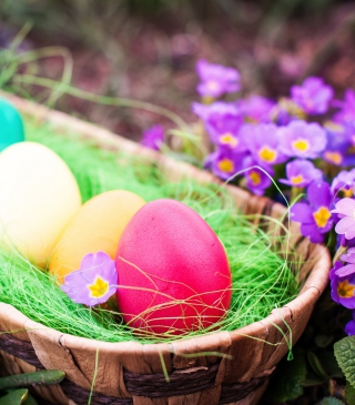 Colorful Easter Eggs sfondi gratuiti per iPhone 6 Plus