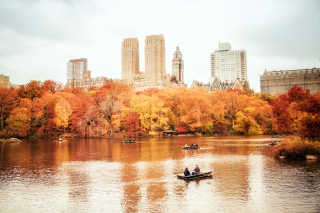 Autumn In New York Central Park Wallpaper for Android, iPhone and iPad