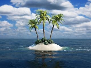 3D Palm Tree Island para Nokia Asha 201