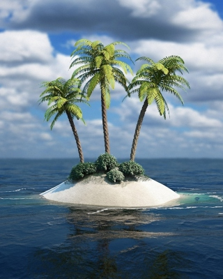 3D Palm Tree Island Wallpaper for Nokia Asha 310
