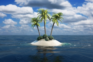 3D Palm Tree Island Wallpaper for Android, iPhone and iPad