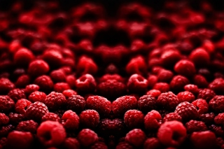 Red Raspberries Picture for Android, iPhone and iPad
