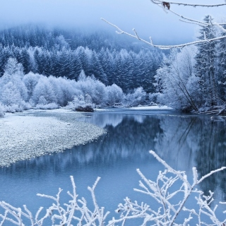 Winter Snow sfondi gratuiti per iPad 3