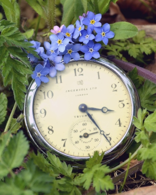 Vintage Watch And Little Blue Flowers - Obrázkek zdarma pro Nokia Lumia 800