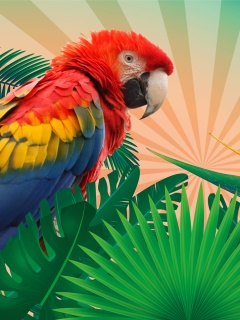 Parrot Macaw Illustration wallpaper 240x320
