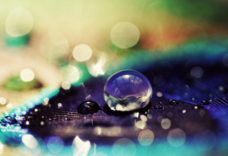 Amazing Water Drop Bokeh sfondi gratuiti per cellulari Android, iPhone, iPad e desktop