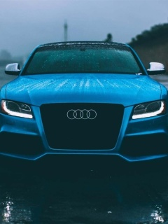 Screenshot №1 pro téma Audi S5 Car in Rain 240x320