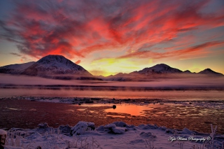 Twilight In Alaska Background for Android, iPhone and iPad