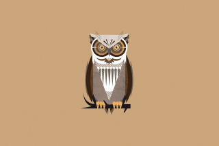 Owl Illustration Background for Android, iPhone and iPad