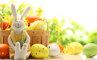 Cute Easter Bunny Wallpaper for Android, iPhone and iPad