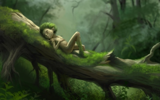 Forest Sleep sfondi gratuiti per cellulari Android, iPhone, iPad e desktop