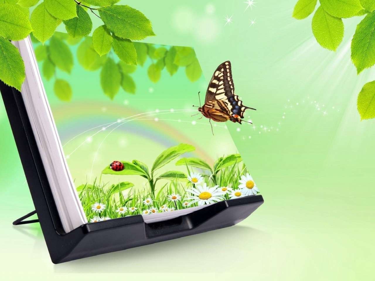 3D Green Nature with Butterfly wallpaper 1280x960