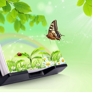 3D Green Nature with Butterfly - Fondos de pantalla gratis para 1024x1024