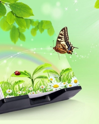 3D Green Nature with Butterfly papel de parede para celular para Nokia C-Series