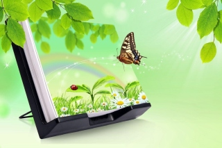 3D Green Nature with Butterfly Background for 960x854