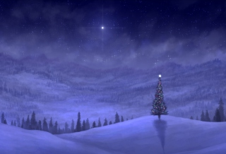 Christmas Tree Background for 960x800
