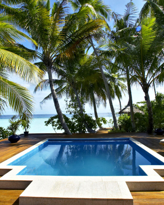 Swimming Pool on Tahiti - Fondos de pantalla gratis para Sharp 880SH