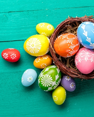 Dyed easter eggs Wallpaper for 240x320