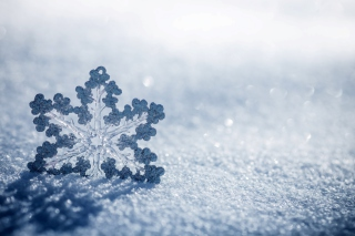 Snowflake Macro HD Wallpaper for Android, iPhone and iPad