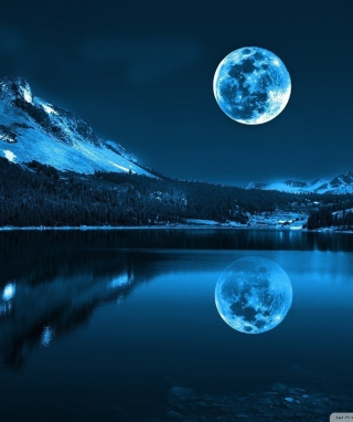 Free Moonlight Night Picture for 320x480