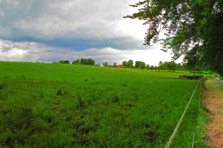 Bavarian meadow Background for Android, iPhone and iPad