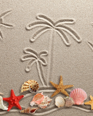 Free Seashells Texture on Sand Picture for iPhone 6 Plus