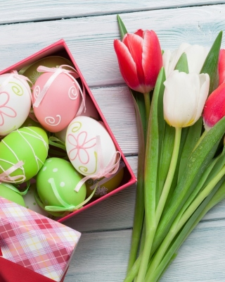 Easter Tulips Decoration Wallpaper for Nokia Asha 310