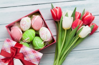 Kostenloses Easter Tulips Decoration Wallpaper für Android, iPhone und iPad