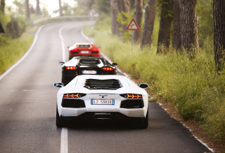 Lamborghini Cars Picture for Android, iPhone and iPad