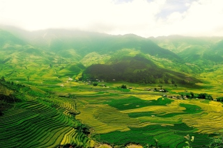 Vietnam Landscape Field in Ninhbinh Background for Android, iPhone and iPad