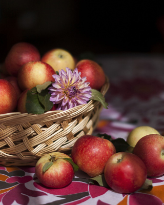 Bunch Autumn Apples Background for Nokia Asha 306