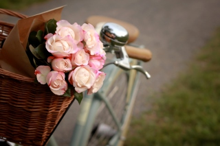 Pink Roses In Bicycle Basket - Fondos de pantalla gratis