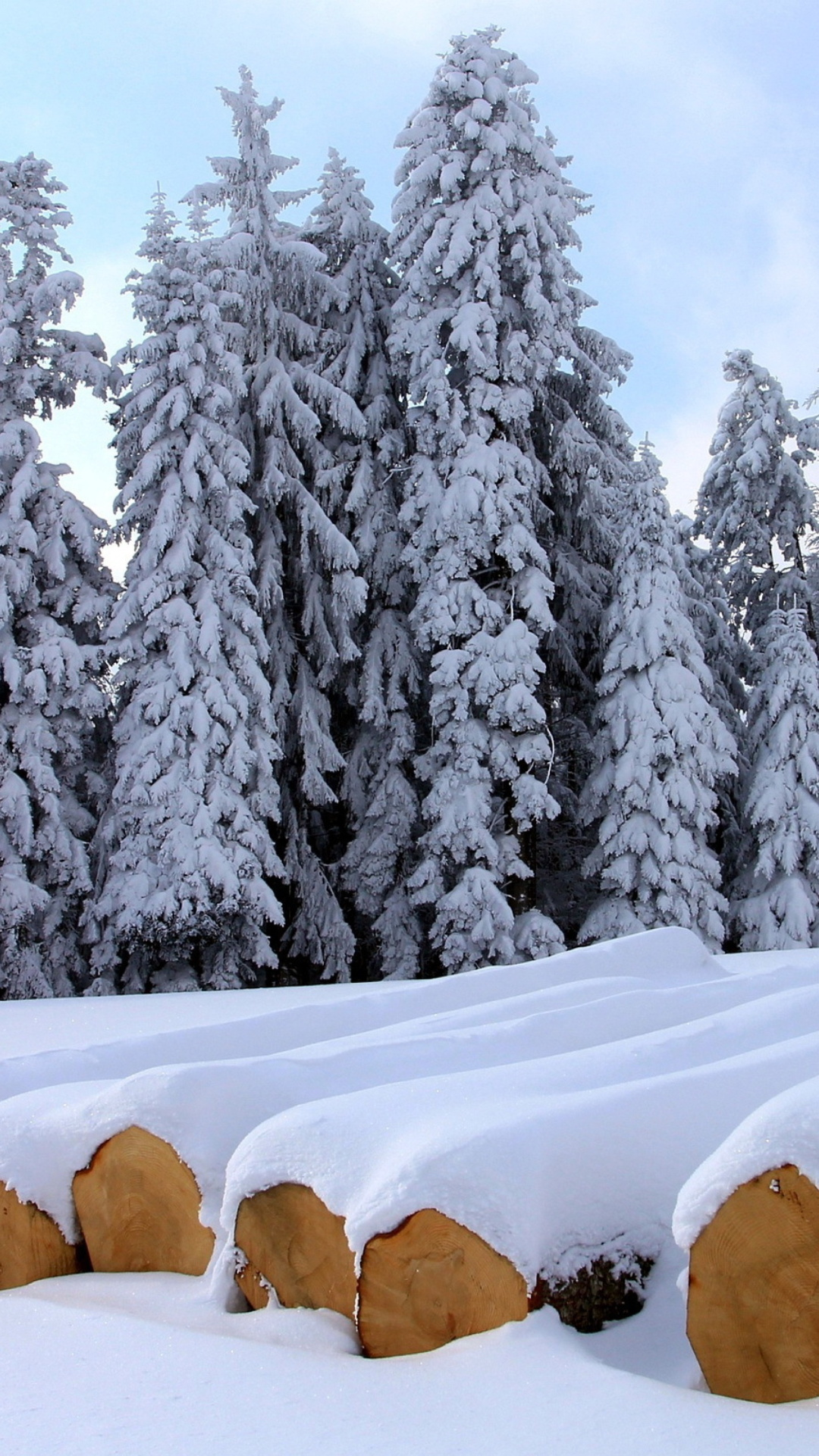 снег зима бревна скачать