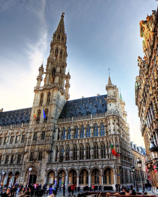 Free Brussels Town Hall Picture for 240x400