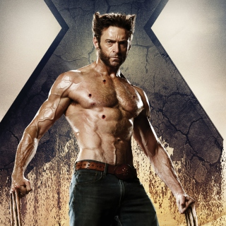 Wolverine In X Men Days Of Future Past - Obrázkek zdarma pro iPad mini