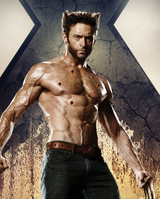 Wolverine In X Men Days Of Future Past - Obrázkek zdarma pro iPhone 6 Plus