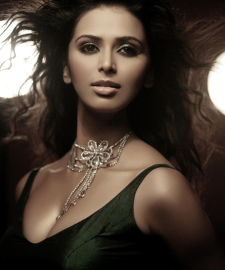 Meenakshi Dixit Hot Wallpaper for Nokia C1-01