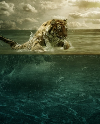 Tiger Jumping Out Of Water - Obrázkek zdarma pro Nokia C-Series