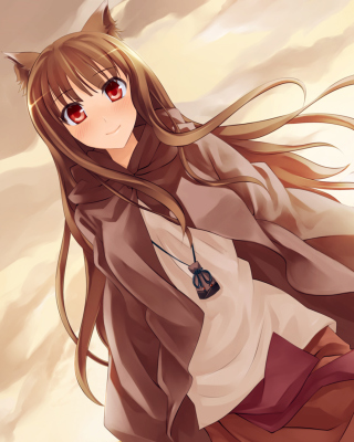 Smile Spice And Wolf Background for Nokia C2-03