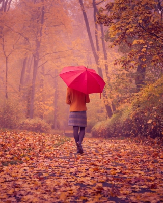 Autumn Walk With Red Umbrella - Fondos de pantalla gratis para Nokia Asha 311