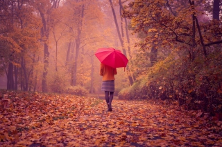 Autumn Walk With Red Umbrella Picture for Android, iPhone and iPad