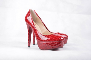 Free Christian Louboutin High Heels Shoes Picture for Android, iPhone and iPad