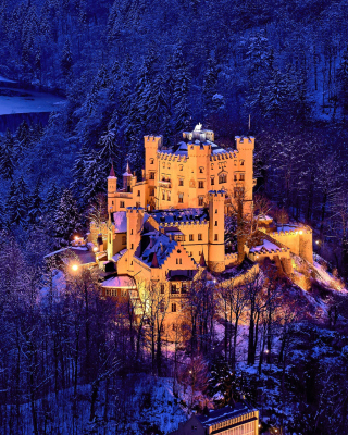 Free Hohenschwangau Castle Picture for HTC Titan