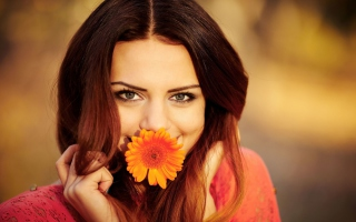 Brunette Cutie With Orange Daisy Wallpaper for Android, iPhone and iPad