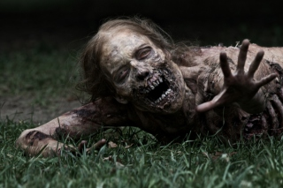 The Walking Dead Background for Android, iPhone and iPad