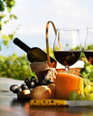 Picnic with wine and grapes Wallpaper for Nokia C1-01